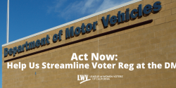 Act Now: Help us Streamline Voter Reg at the DMV, voting, California, elections