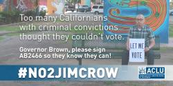 AB2466, voting rights, jim crow, discrimination, ACLU, grassroots advocacy