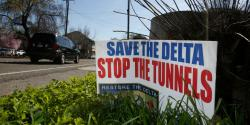 Save the delta stop the tunnels no waterfix